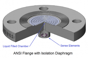 ANSI Flange with Isolation Diaphragm