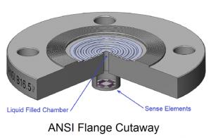 ANSI Flange Cutaway