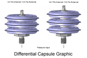 Differential Capsule Graphic