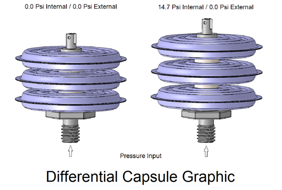Differential Capsule Graphic